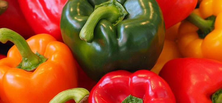 Green, Red, Yellow, And Orange Bell Pepper